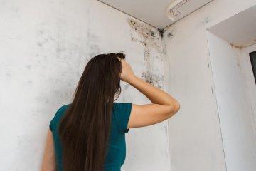 Penészes lakásban rosszabbodnak az asztmás tünetek